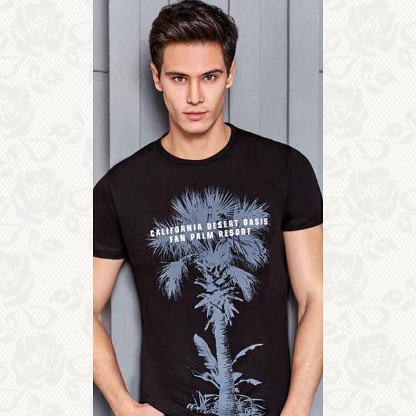 Мужская футболка, цвет черный, 4057