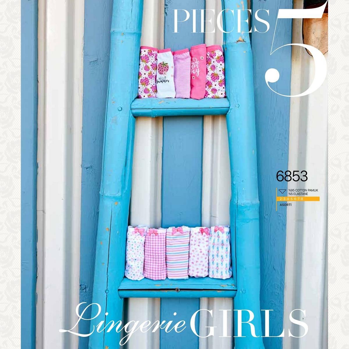 Трусики для девочки, цвет стандарт с фото, 5 шт.