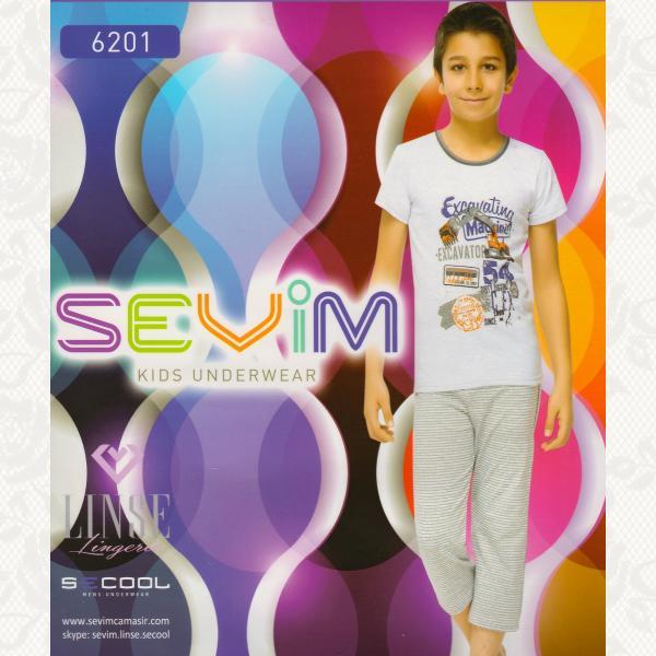 Пижама для мальчиков, цвет серый с фото, 2 шт., 6201